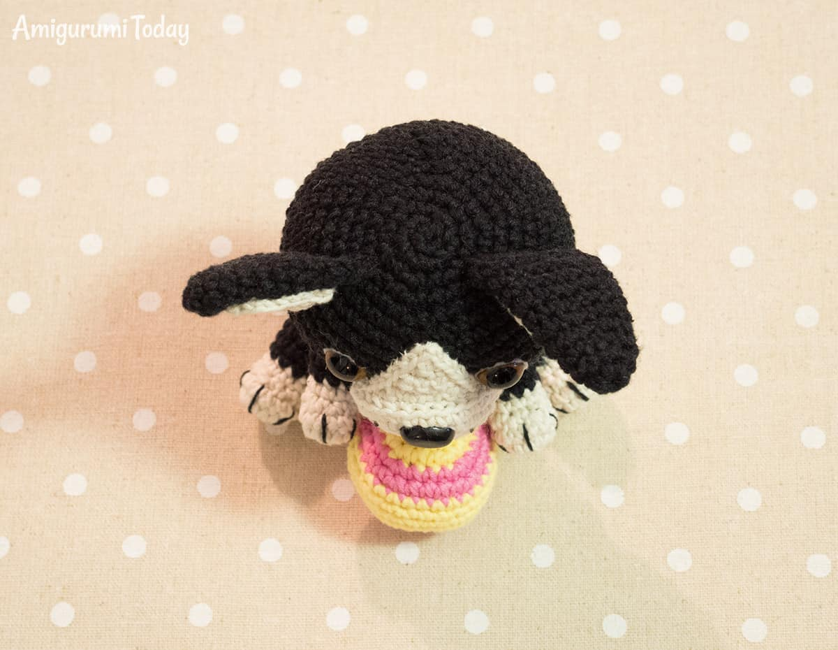Free Amigurumi Boston Terrier Puppy crochet pattern