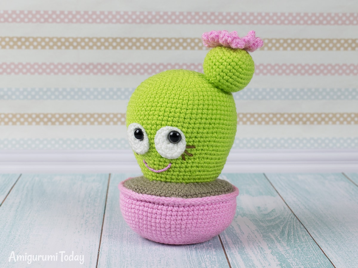 Blooming Cactus Amigurumi - Free crochet pattern by Amigurumi Today